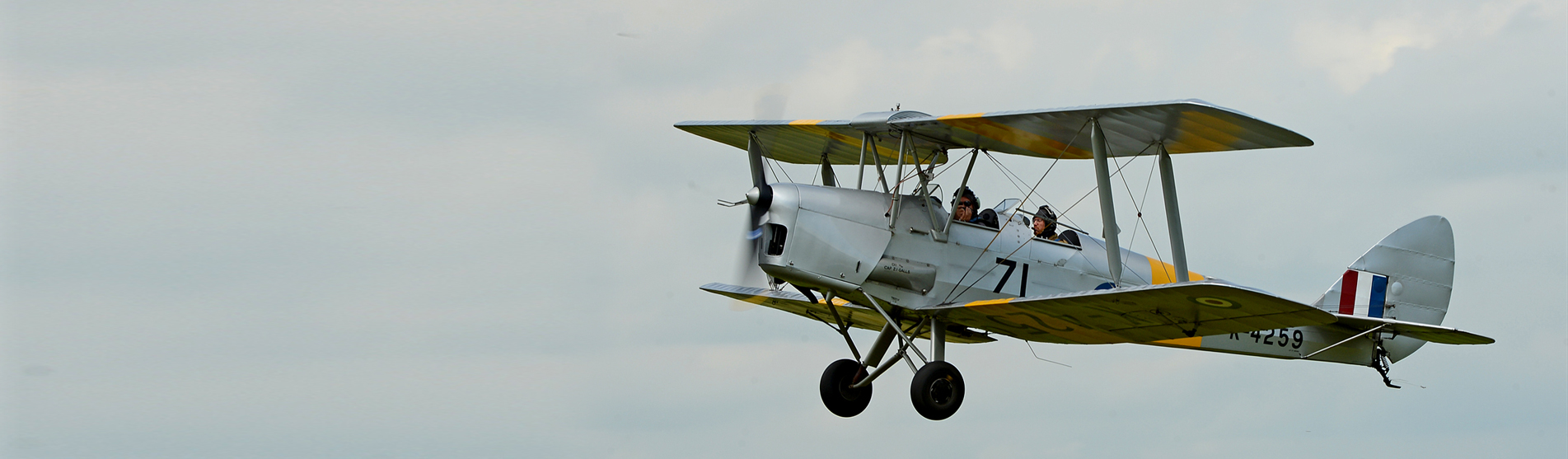 Tiger-Moth-Flights-BanR-Foo