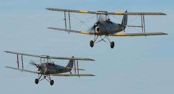 Tiger-Moth-2